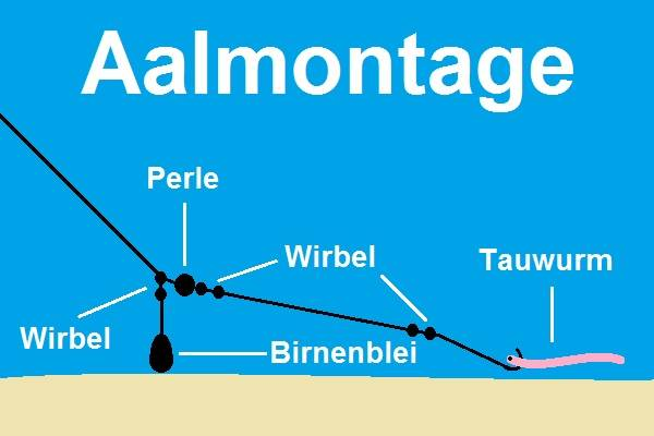 Aalmontage Anleitung